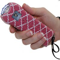 StreetWise Ladies Choice 21 Million Volt Rechargeable Stun Gun review