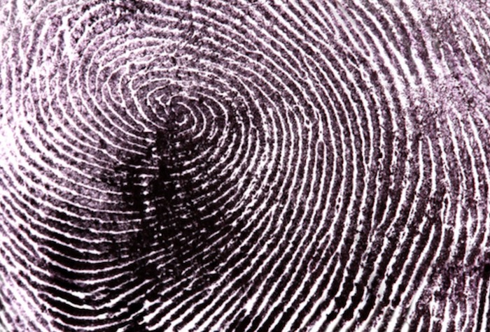 A Guide To Biometric Security Systems