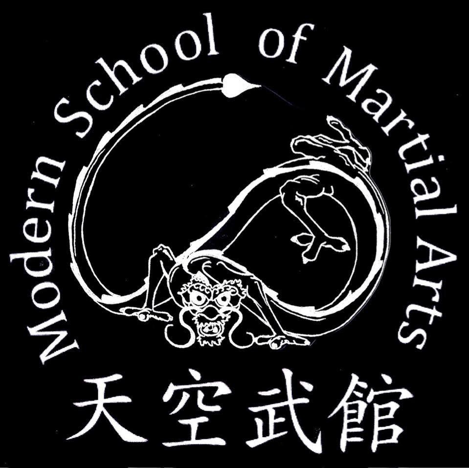 modern school of martial arts