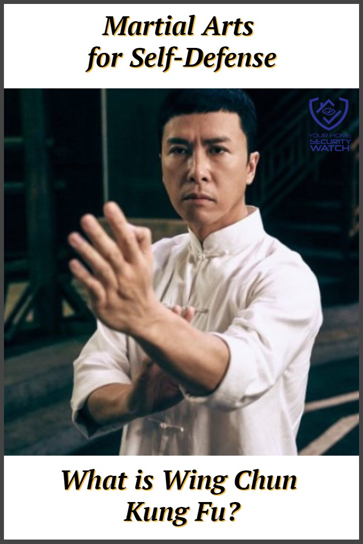wing chun martial art