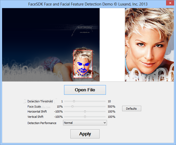 Luxand-FaceSDK_2